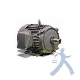 Motor Teco Westinghouse Np0106