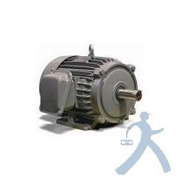Motor Teco Westinghouse Np0156