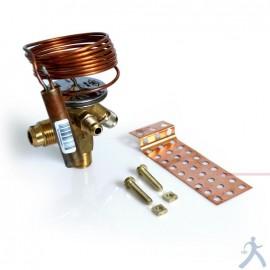 Cuerpo Valvula Expansion Emerson R22