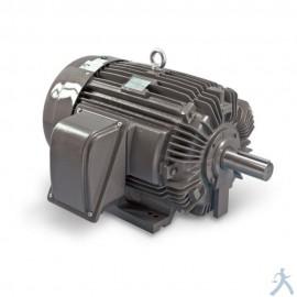 Motor Teco Westinghouse Np0154